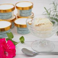 【ちょっぴりお得な12個】ミルキーヴィーガンアイスクリーム【バニラ】