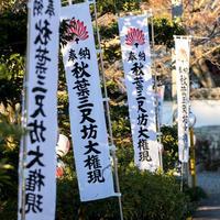 令和2年あきば大祭:祈願旗【名入れ奉納】