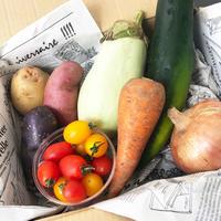 【お試しセット】EARTHの野菜BOX