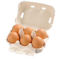 富士の平飼い卵 6個入り