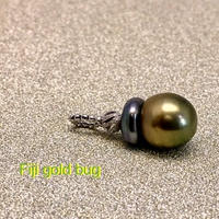 Fiji gold bug(フィジーゴールドバグ)
