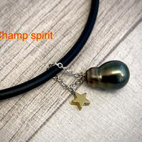 Champ spirit(チャンプスピリット)