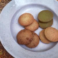国産米粉クッキー ココア