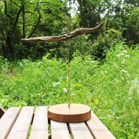 流木の日時計〜プテラノドンの夢〜 Pteranodon Dreaming