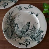 ヴィエイヤー ボルドーのデザートプレート 小鳥と虫たち#3