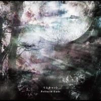 リムキャット4th ALBUM「Pellucid Ends」