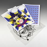 ★手品・マジック★予備カード(魔法使いのカード当て)★C2947A
