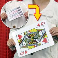 ★手品・マジック★フラッシュギャグカード★C5312