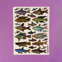 魚 ⑨ キラキラ シール FISH STICKER