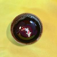台湾 コップ 鯉 ブラウン