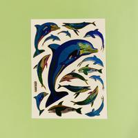 イルカ ④ キラキラ シール  DOLPHIN  STICKER