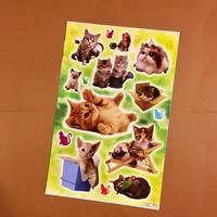 猫 ネコ シール 大 CAT STICKER  ③