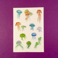 クラゲ シール ① JELLYFISH STICKER