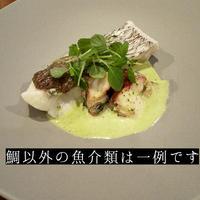 天然真鯛と北海道産ホタテ貝のバジルクリームソース