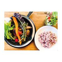 RKGARDEN オリジナルスープカレーと旬野菜【2人前】