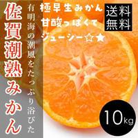 【超得!】10kg早生みかん☆★甘酸っぱくてジューシー!