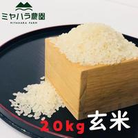ミヤハラ米20kg(玄米)【9年連続食味特A判定!「品種:さがびより」令和元年秋☆収穫米100%保証】