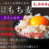 【コチラはお米5kg以上と同時購入の方のみ購入可能!】5,000g(約175~250合分)【リピーター様300名様超!農家直送】【超高品質もち麦】【栄養価の高い品種「ダイシモチ」】