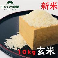 ミヤハラ米10kg(玄米)【9年連続食味特A判定!「品種:さがびより」令和元年秋☆収穫米100%保証】