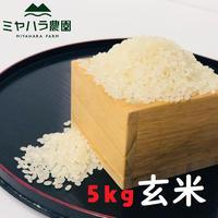 『新米』ミヤハラ米5kg(玄米)【10年連続食味特A判定!「品種:さがびより」令和2年秋☆収穫米100%保証】
