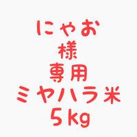 【ゆうパック発送】にゃお様専用商品★ミヤハラ米5kg