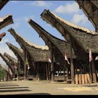 インドネシア セレベスアラビカ(200g)
