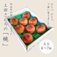 上田さんちの桃 大玉6〜7個入[予約販売]