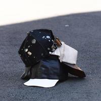 """ferric """"leather cap"""""""