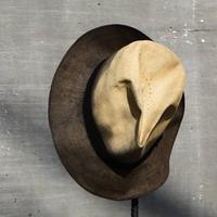 "Subtile ""panama hat"""