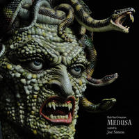 Medusa Wall-Hunger 完成品