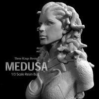 Medusa 1/3 Bust kit