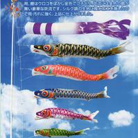 鯉のぼり6点セット 寿々 5m