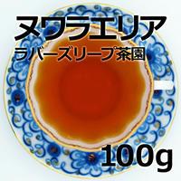 紅茶 ヌワラエリア 100g 【ラバーズリープ茶園】 2020年新茶 NuwaraEliya