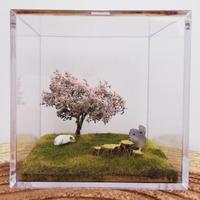 【5周年感謝祭】《RC×カプリス》5周年&令和記念チンチラヴィネット『桜の木の下で ~CHILLA&PEACE~』  11番〜20番