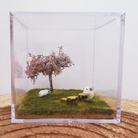 【5周年感謝祭】《RC×カプリス》5周年&令和記念チンチラヴィネット『桜の木の下で ~CHILLA&PEACE~』1番〜10番