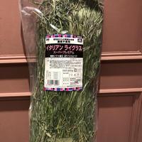 愛知県産イタリアンライグラススーパープレミアム  200g
