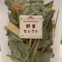 【デ・カレン】秋の野草セレクト