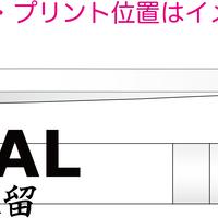 漢字ペンライト