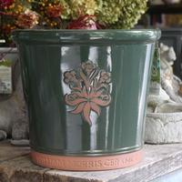 William Morris グリーン Lサイズ