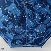 星図折畳傘 / Star Umbrella