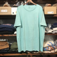 【 ラス1】POLO RALPH LAUREN smallpony tee (Light Green)