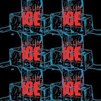 "DJ MURO × RUGGED ""CHILLIN' ICE 2020"" mix CD (25曲)"