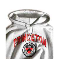 Princeton University Reverse Weave Hooded Sweatshirts - Ash
