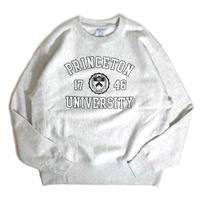 Princeton University Reverse Weave Crewneck Sweatshirt - Ash