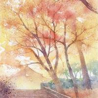 洛西の秋(京都・龍安寺)