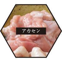 【コラボ商品】「こらぁ源」もつ鍋専用 追加ホルモン(アカセン)100g