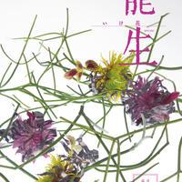 月刊『いけ花龍生』2017年9月号