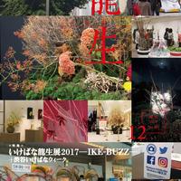 月刊『いけ花龍生』2017年12月号(いけばな龍生展特集号/全点掲載)