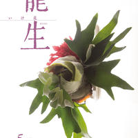 月刊『いけ花龍生』2019年5月号【国内送料無料】