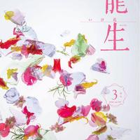 """月刊『いけ花龍生』2020年3月号【国内送料無料】Monthly """"Ikebana Ryusei"""" magazine  Mar.2020 issue"""